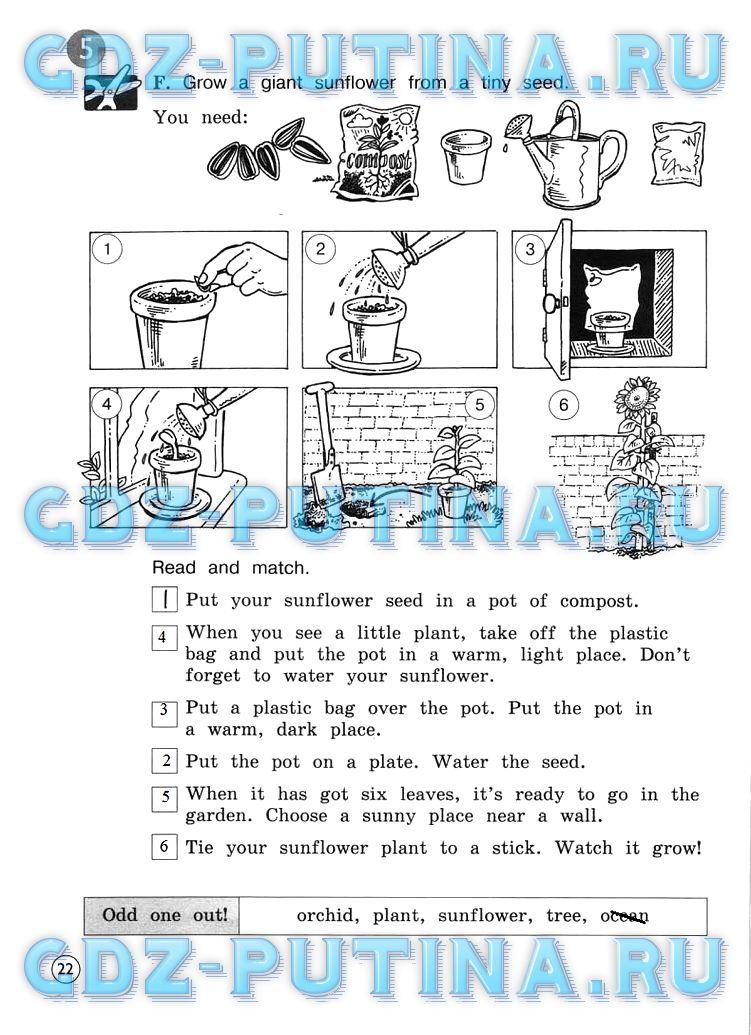 ГДЗ ответы английский язык 4 класс Вербицкая рабочая тетрадь