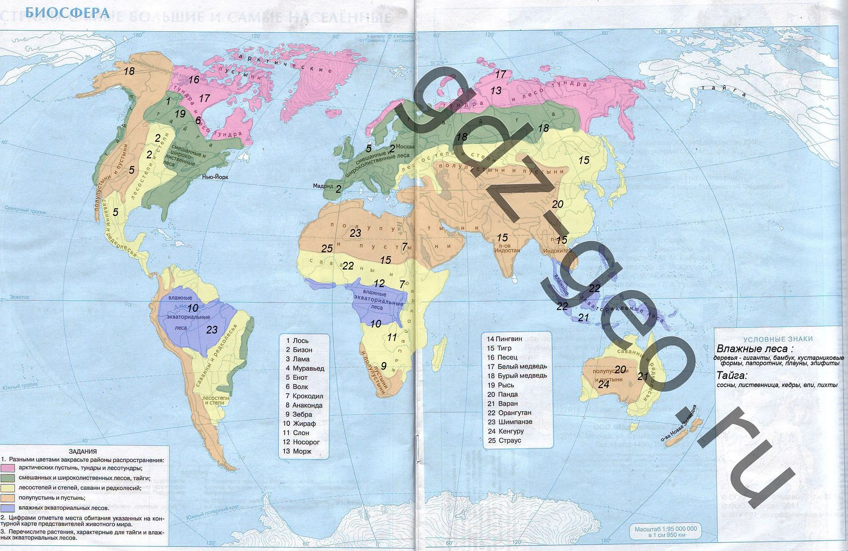 Решебник по географии 6 класс контурная карта.