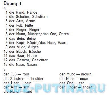 Гдз немецкий учебник 4 класс бим рыжова