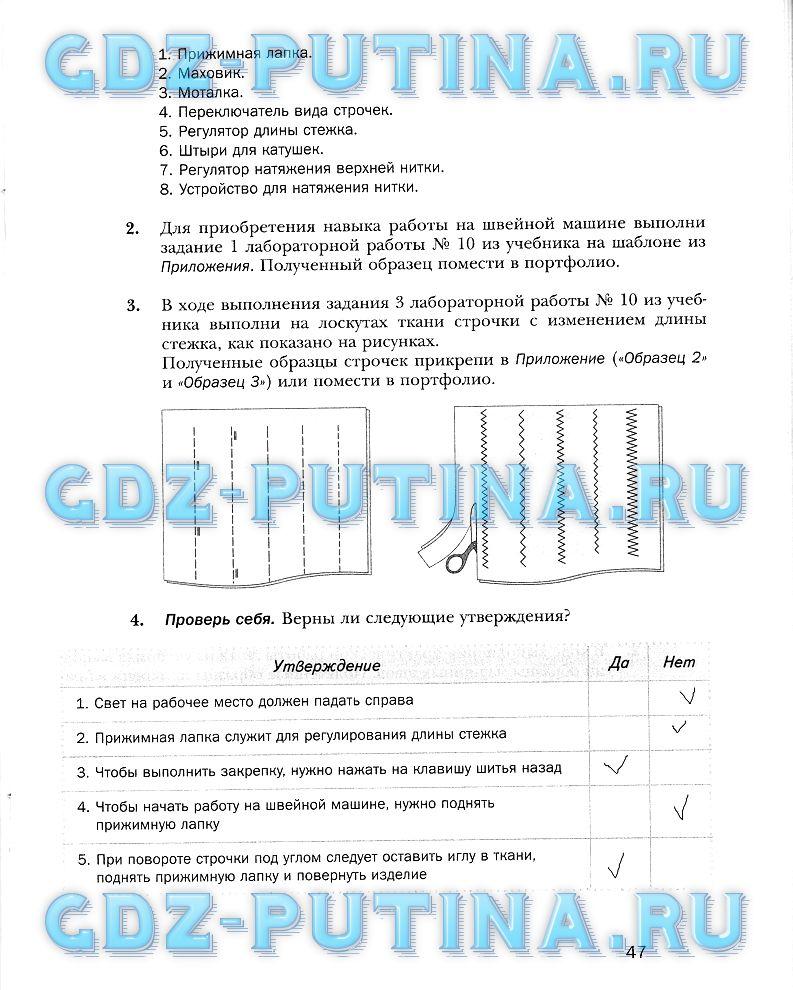 Гдз от Путина 6 Класс Новые Решебники